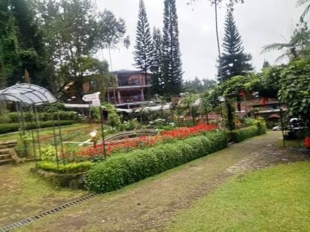 The Pinewood Lodge & Organic Farm